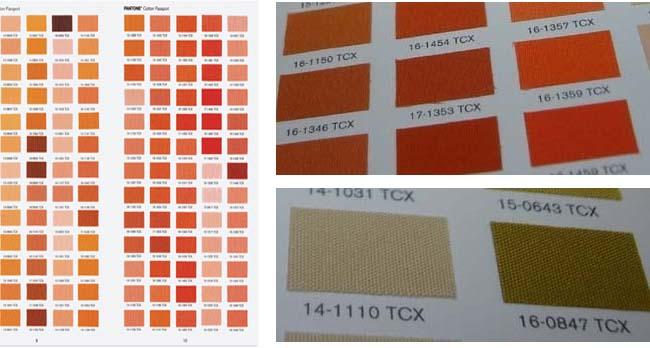 Pantone Cotton Passport Ffc104colorcontroller